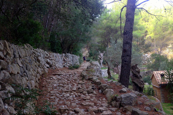 Recorregut-Trail-Walk-Tramuntana-Mallorca-6