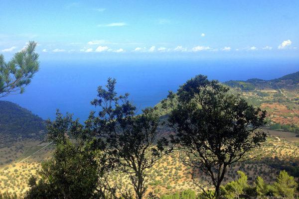 Recorregut-Trail-Walk-Tramuntana-Mallorca-9